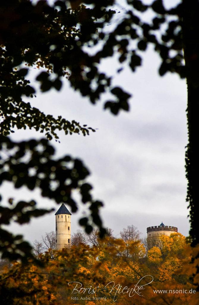 Plesse Burg